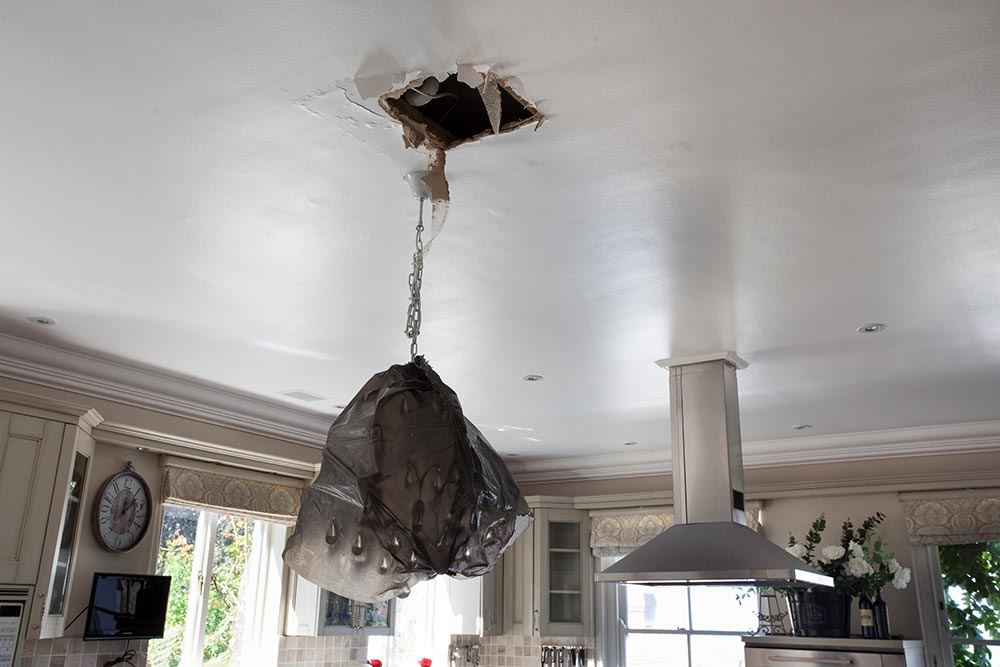 Ceiling Project, Ceiling repairs
